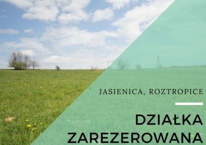 parcel for sale - Jasienica, Roztropice
